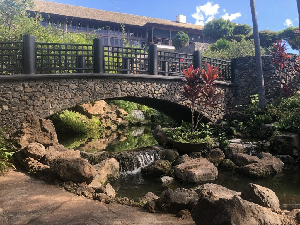 Hotel Wailea - The only adults only resort on Maui - Fabulous!  ~ Hawaii 2019